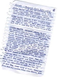 A page from Erik's journal