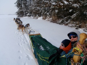 Bearskin mushing tour 2011